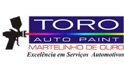 TORO AUTO PAINT